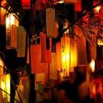 七夕の笹 短冊に願い いつまで飾ってどのように処分する?